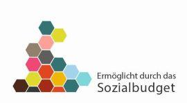 Logo-Sozialbudget150